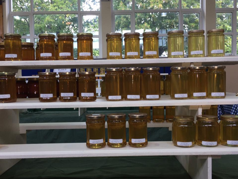 Selection of Honey for Judging